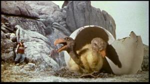 Dois pássaros Rocas em seu ninho, cuidado, pois são enormes!!!