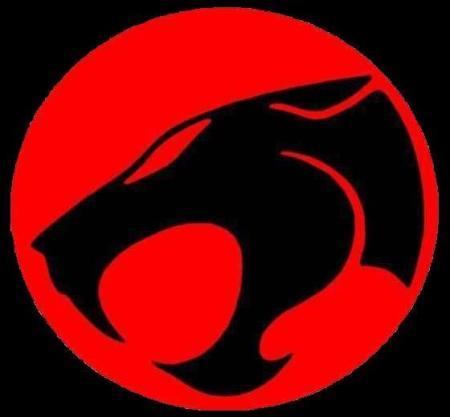 Thundercats on Dos Dois Desenhos Mais Cultuados Dos Anos 80  He Man E Thundercats